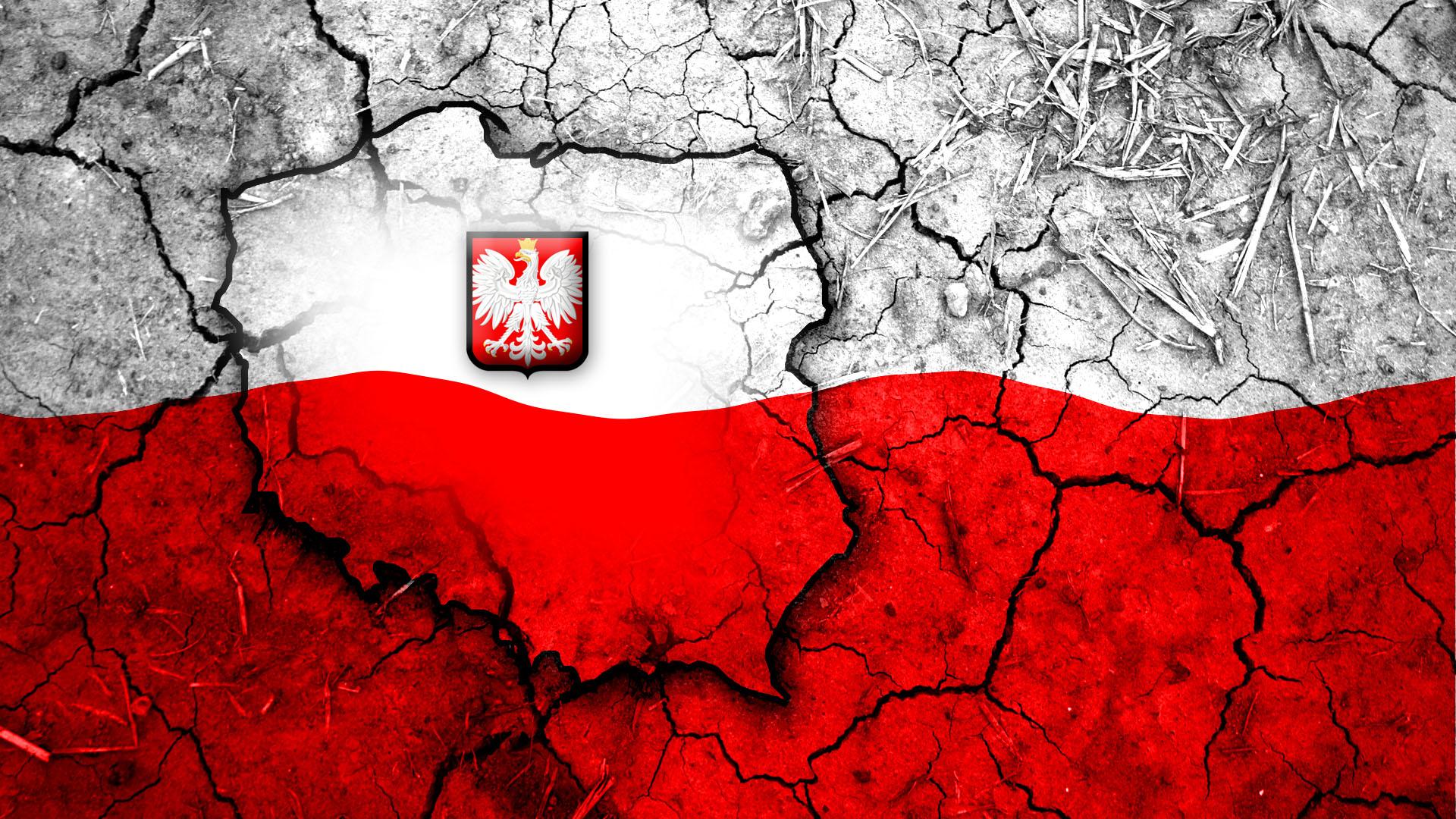 Польский язык для школьников, студентов и взрослых